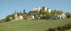 Schloss Kapfenstein Mansions, House Styles, Home Decor, Road Trip Destinations, Wine, Decoration Home, Manor Houses, Room Decor, Villas