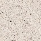 Silestone 4 in. Quartz Countertop Sample in Stellar Cream-SS-Q0500 - The Home Depot