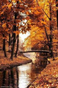 warm autumn by Konrad Demczuk / Fall Pictures, Nature Pictures, Autumn Photography, Landscape Photography, Halloween Photography, Natur Wallpaper, Autumn Scenes, Autumn Aesthetic, Warm Autumn