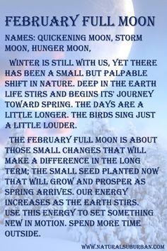 Moon:  #Full #Moon ~ February.