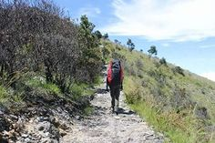 Mount lawu is a massive compound stratovolcano straddling the border between East Java and Central Java  Indonesia .  #7landscape #landscape #adventure #scenery #twillight #nature #panorama #happy #travelling #view #yesterday #epic #me #picoftheday #goodday #followme #instalike #explorejogja #visityogya #mount #lawu #karanganyar #cemorosewu #skyblue #hiking #treking #run by anagungnugroho