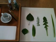 beautiful post about how to paint leaves