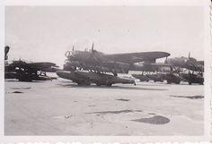 Foto Luftwaffe Flugzeug He 115 unbekannte Einheit 1940/41 Wo ???   eBay