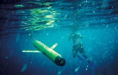 US ocean-observing project launches at last Network of deep-water observatories streams data in real time.