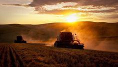 #Harvest #Farmers Photo Credit: Palouse Harvest Photographic Tours w/ Teri