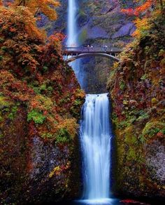 Multnomah Falls, Oregon. 2nd highest year-round waterfall in the US.