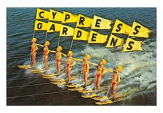 to be a cypress gardens ski girl!