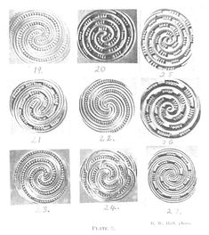 Journal of the Polynesian Society: Maori Spirals, By W. Phillipps, P P 30, Maori Art, Spirals, British Museum, Optical Illusions, Carving, Journal, Art Therapy, Mythology
