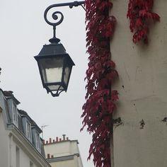 Paris by DVF