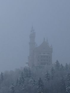 Fussen. Neuschwanstein castle. Assumed that the picture is not so good, winter -12ºC but it's a charming place; highly recommended...but maybe in spring is better! 4 hours far from Regensburg by train.