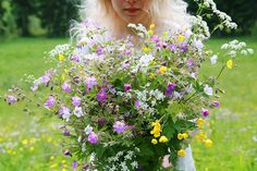 wild really wild flowers.