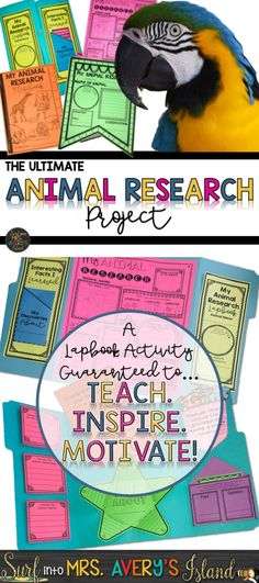 Looking for ideas on an Animal Research Project for kids guaranteed to inspire even your most reluctant students?  These printables are easy to differentiate and perfect for teachers in upper and lower elementary grades as well homeschoolers!  Click here to discover a variety of no prep graphic organizers, a lapbook project, Interactive Notebook foldables, and a plethora of other cross-curricular activities to easily integrate into your science lesson plans. #animalresearchprojectforkids