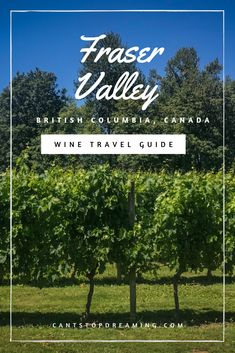 Columbia, Focus Foods, Fraser Valley, Types Of Wine, Sister Location, Mountain Photography, Summer Bbq, Travel Guides