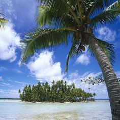Rangiroa Tuamotu Island This is a special place I'm very thankful to have sailed to. I spent several weeks exploring the reefs and shores.