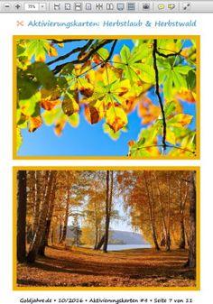 Kostenlos 10 Aktivierungskarten mit Herbstmotiven