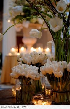 floral arrangement: gorgeous white tulips in a variety of lengths. I love tulips. White Tulips, White Flowers, Spring Flowers, Tulips Flowers, Daisies, Our Wedding, Dream Wedding, Wedding White, Wedding Reception