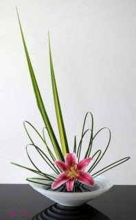 Ikebana, The Art of Japanese Flower Arrangement | Wellington Garden Club