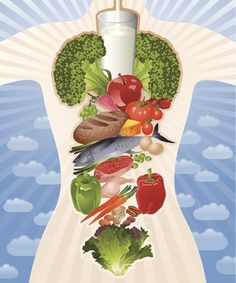Foods PCOS Women Should Be Eating More Of: Vector-Based Illustration/Getty