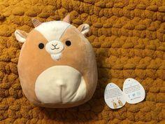Cute Stuffed Animals, Baby Animals, Silly Squishies, Disney Starbucks, Save My Money, Minecraft Creations, Cute Pillows, Cute Plush, Animal Pillows
