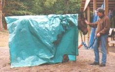 Natural horsemanship. Great articles