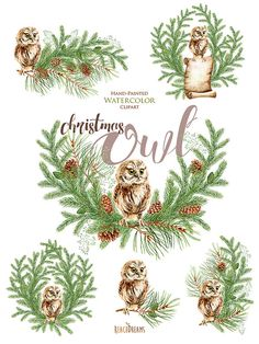 Christmas Watercolor Owl Happy Holidays Green By ReachDreams