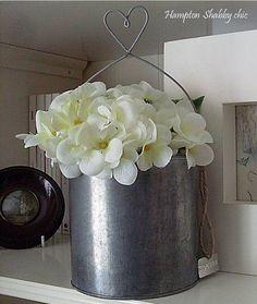 Violetas blancas
