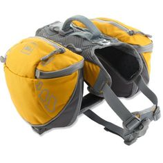 dog backpack from REI