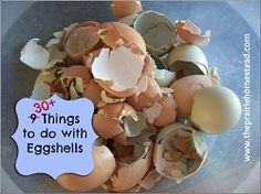 30+ things you can do with eggshells- you'll be amazed!
