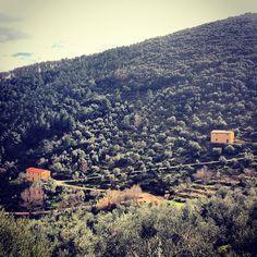 Il Centro Parco e la foresteria all'interno dell'area protetta Monte Castellare