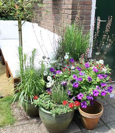 Large Garden Planters to Add Colour and Texture