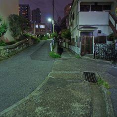 夜散歩のススメ「台地岬と菊坂の暗渠」 東京都文京区