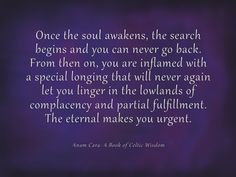 Once the soul awakens, the search begins and you can never go back. - John O'Donohue