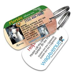 Florida Drivers License Pet Tag  Durable Stainless Steel Dog Id Tag Personalized Pet Tag Custom Pet Tag Dog License Id ** More info could be found at the image url.(This is an Amazon affiliate link and I receive a commission for the sales)
