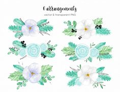 Winter & Christmas flowers pack - Illustrations - 2