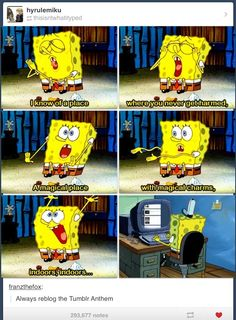 It makes it better that our anthem was written by spongebob. I think it fits tumblr well