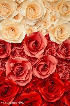 paper flowers, фотозона большие бумажные цветы розы