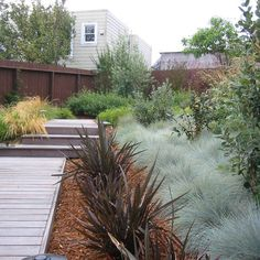 Small Backyard Design Ideas, Pictures, Remodel and Decor