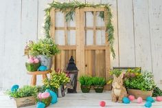 Easter Decoration Photo Backdrop for photography SH601 – Dbackdrop Easter Backdrops, Muslin Backdrops, Backdrops For Parties, Custom Backdrops, Background For Photography, Photography Backdrops, Photo Backdrops, Green Grass Background, Easter Garden