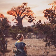 African sunsets like these  Feeling totally blissed out in the middle of nowhere.    Head on over to our YouTube channel to see our very exclusive (read: basic) camp site on the edge of the Runde River in Zimbabwes Gonarezhou National Park.     #zimbabwe #gonarezhou #gonarezhounationalpark #chilojo #chilojocliffs #exclusivecamps #zimparks #destinationanywhere #safarilife #lovelovetravel #roadtrippin #overland #africansafari #africansunset African Sunset, Bushcraft Gear, Road Trippin, African Safari, Zimbabwe, Campsite, Sunsets, National Parks, Channel