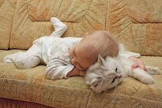 Awww Cuddle Buddies <3