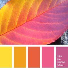 Orange Color Palettes, Color Schemes Colour Palettes, Colour Pallette, Color Palate, Pantone, Yarn Color Combinations, Creative Colour, Color Psychology, Color Stories