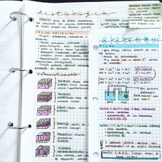 04 . 10 . 2016 // today's notes on chemistry and biology. My test is tomorrow, wish me luck! [taken from my studygram: getstudyblrs]