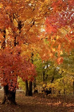 21 Spectacular Places All People Who Love Fall Colors Must Visit