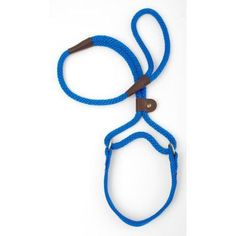 010020 Mendota Dog Walker, 3/8 inch x 4', Blue, Green