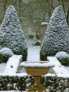 Winter Topiaries