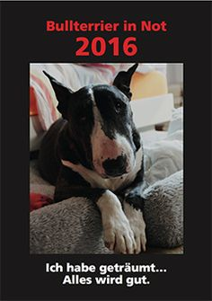 Der neue Bullterrier in Not Kalender 2016 Dogs, Animals, Calendars 2016, Animales, Animaux, Pet Dogs, Doggies, Animal, Dog