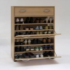 Big-Shoe-Storage-Cabinet...I have a book shelf in will use for this very thing.  Perfect!