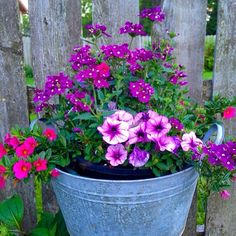 Priscillas: Good Morning From the Front Yard! Container Flowers, Flower Planters, Container Plants, Garden Planters, Container Gardening, Flower Pots, Faux Outdoor Plants, Outdoor Flowers, Faux Flowers