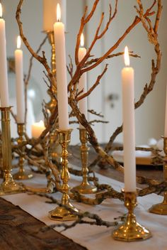 Inexpensive yet so creative. Here's a DIY centerpiece for your winter holiday table. Bring the beauty of nature indoors.