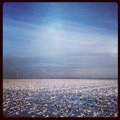 polder in de sneeuw